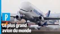 Beluga XL : comment Airbus fabrique le plus grand avion du monde