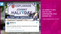 Johnny Hallyday : Après Toulouse, une autre ville pourrait renommer une place en son nom