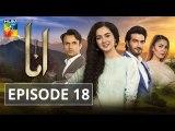 Anaa Episode 18 - HUM TV Drama 16 June 2019