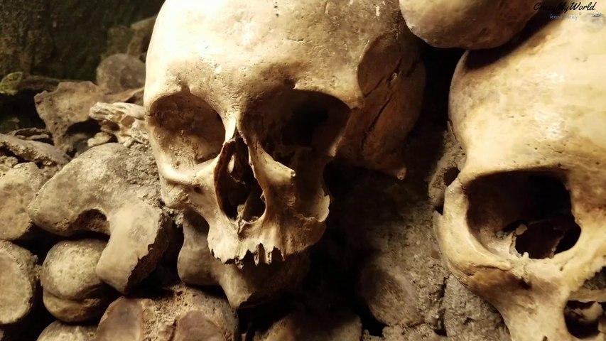 Skulls In Paris Catacombs