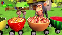 Learn Fruits Names For Childrens || Animals Names And Sounds || bear lion monkey gorilla panda