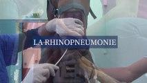 La rhinopneumonie