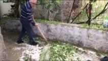 Kayseri'deki dolu yağışı etkili oldu
