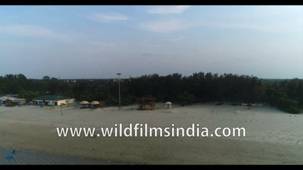 How does Bakkhali Beach look during low tide, 4k Aerial view , Stock footage , West Bengal, India