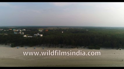 Bird's eye view Bakkhali Beach during low tide, the unique life of  Bay of Bengal, West Bengal, India, 4k stock footage