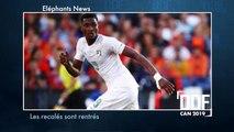DDF   Éléphants News  : Toute l'actualité sportive ivoirienne de ce weekend