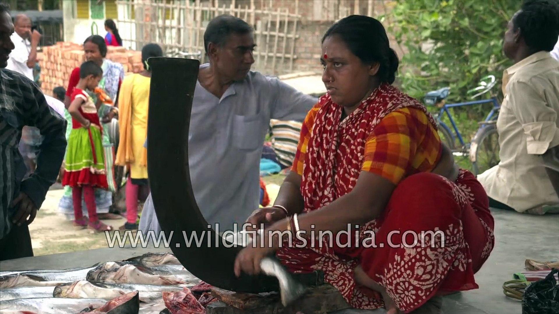 Mouth watering Sea food from Sundarban, fish market of Sundarban, Durgapur village, Satjelia , West