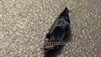 How to row a hand made fishing boat | other local cargos and fishing boats in West Bengal, 4k Aerial stock footage