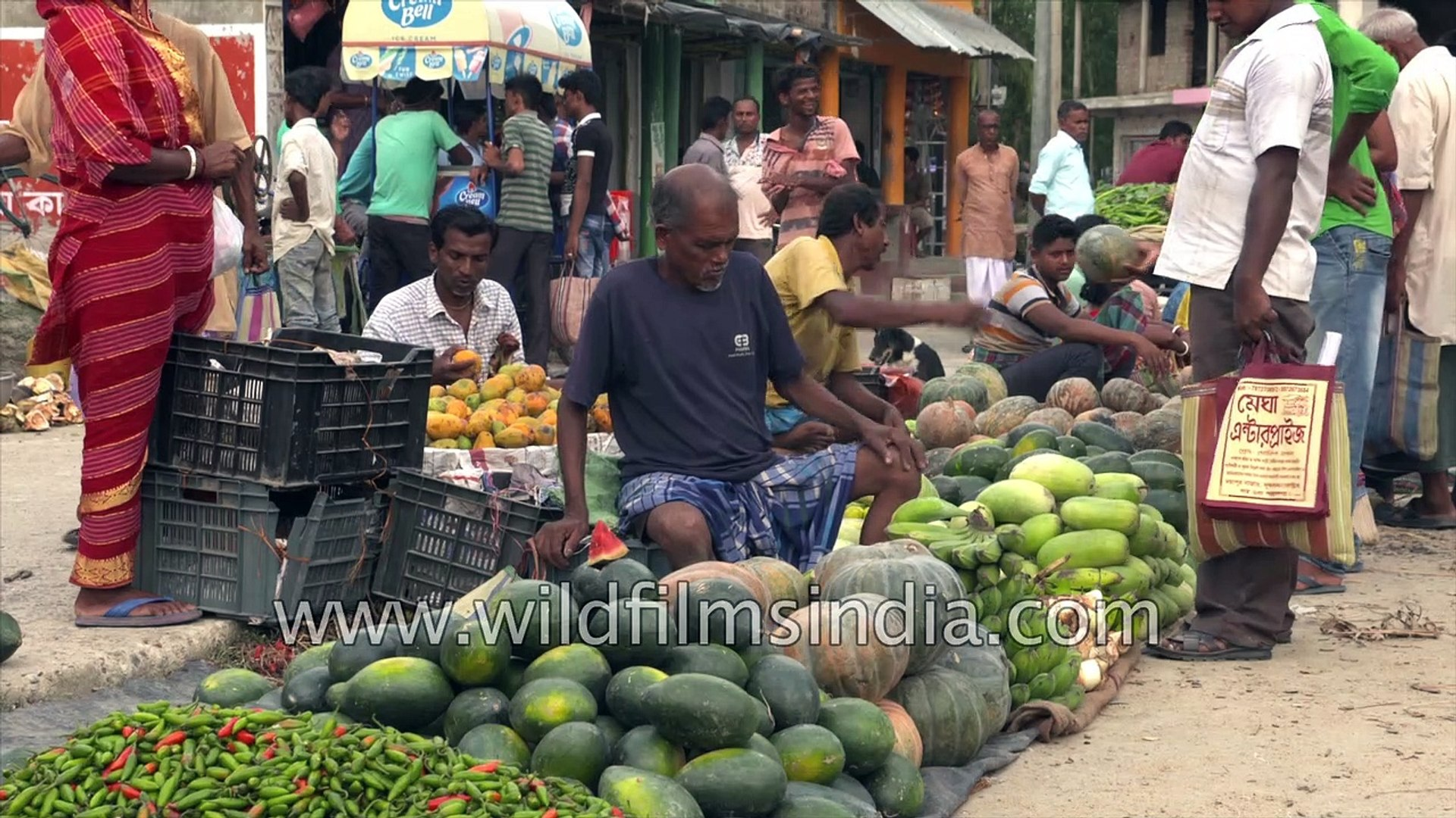 Durgapur Vegetable market at Satjelia Village,  Sundarbans, West Bengal, India. 4K stock footage.