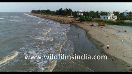 Panorama view Local fishermen catching fish at Bakkhali beach, Bay of Bengal, West Bengal, India. 4k Aerial stock footage