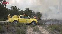 Los bomberos consiguen estabilizar el incendio forestal de El Perelló
