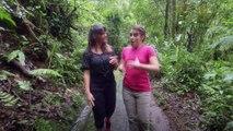 À la recherche d'un antivenin universel #2 | Sur les routes de la science Costa Rica