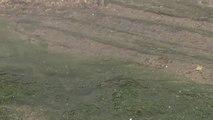 Vertido de 15 litros de agua contaminada por segundo en Coín