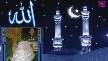 Labib Djire - Saya