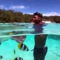 Cet homme nage avec une raie et de magnifiques petits poissons. Regardez !
