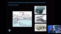 [Live- Conférence] Océans, un avenir pour l'humanité ? (part 3)