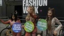 Miembros de PETA se visten de gatos para celebrar la prohibición del uso de pieles en la Semana de la Moda de Londres