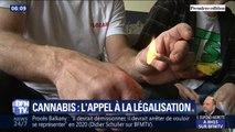 """Faut-il légaliser le cannabis ? Médecins et personnalités politiques appellent à sa légalisation au nom du """"pragmatisme"""""""