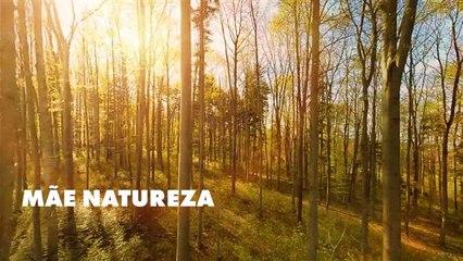 A relação da natureza com a saúde e bem-estar