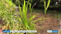 Le niveau des réserves d'eau inquiète en vue de l'été