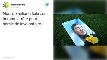 Disparition d'Emiliano Sala. Qui est Dave Henderson, le pilote arrêté par la police britannique ?