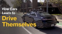 How Cars Learn to Drive Themselves