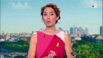 Piéton aveugle agressé à Paris : l'automobiliste en garde à vue