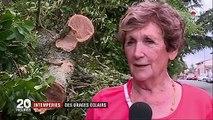 Inondations, toitures arrachées : les violents orages font d'importants dégâts en France