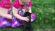 Adorable Babies and Cats moment -  Baby and cat fun and fails Compilation
