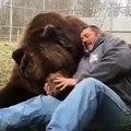 Ce grand ours et cet homme sont très attachés l'un à l'autre. Trop mignon !