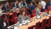 Commission des affaires économiques : Énergie et climat (suite) - Jeudi 20 juin 2019