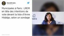 Municipales à Paris. Anne Hidalgo perdrait la mairie de Paris, au profit de LREM selon un sondage
