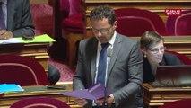 Fonction Publique: le Sénat adopte « l'amendement Benalla »
