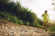Trail: Tipps für das Training