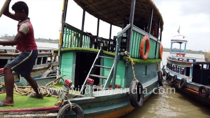 Private Boat ride in Sundarban, crossing the Datta River  to Backpackers Eco Village , Satjelia Island, West Bengal.