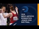 2016 Junior High Bar final European Championships - Bern (SUI)