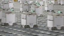 Chez Ocado, au cœur de l'impressionnant ballet des robots