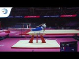 Axel AUGIS (FRA) - 2018 Artistic Gymnastics Europeans, qualification pommel horse
