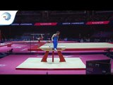 James HALL (GBR) - 2018 Artistic Gymnastics Europeans, qualification pommel horse