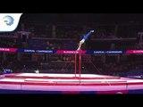 Borna MATIC (CRO) - 2018 Artistic Gymnastics Europeans, junior qualification horizontal bar