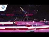 Annie YOUNG (GBR) - 2018 Artistic Gymnastics Europeans, junior qualification bars