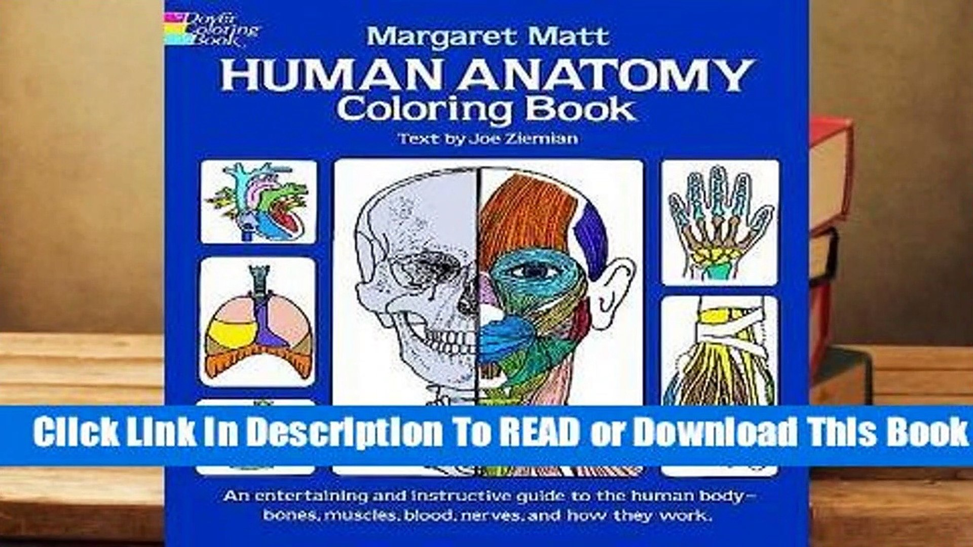 [Read] Human Anatomy Coloring Book For Online