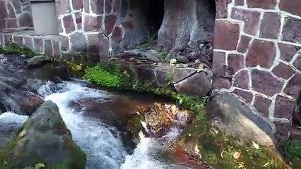Vídeo 31. Río de Chalma