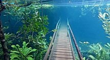 Underwater Hiking Trail in Brazil - Strangely Beautiful