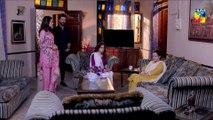 Jaal Episode #16 HUM TV Drama 21 June 2019