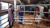 Chézery-Forens (Ain) : dans les pas d'Anne-Flore Arbez, vétérinaire