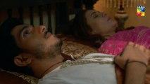Deewar e Shab Episode 4 HUM TV