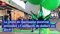La vente de marijuana pourrait atteindre 15 milliards de dollars en 2019