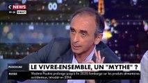 """""""Avoir un papier français, ça ne veut pas dire être assimilé à la France. [...] On n'est pas Français si on refuse la culture française et l'Histoire de France !"""" - Éric Zemmour"""