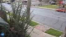 Il voit une trottinette électrique passer dans sa rue et pousse un hurlement en voyant ce qu'il y a derrière